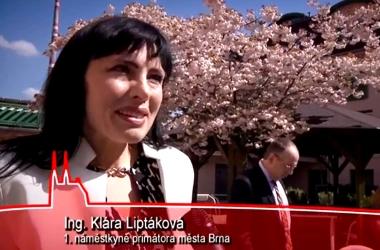 Vítání občánků 30.04 2016 Brno Maloměřice Obřany